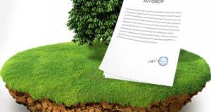 Дерево, участок земли, договор